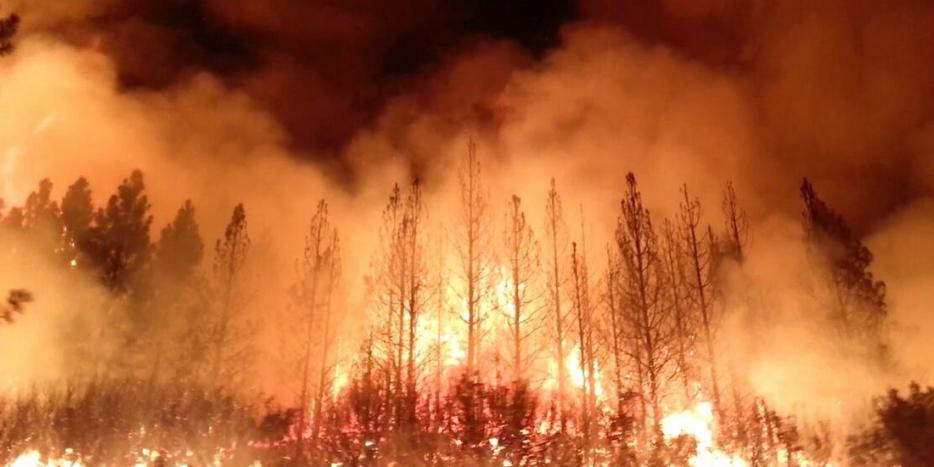 The Rim Fire in California on Aug. 17, 2013.